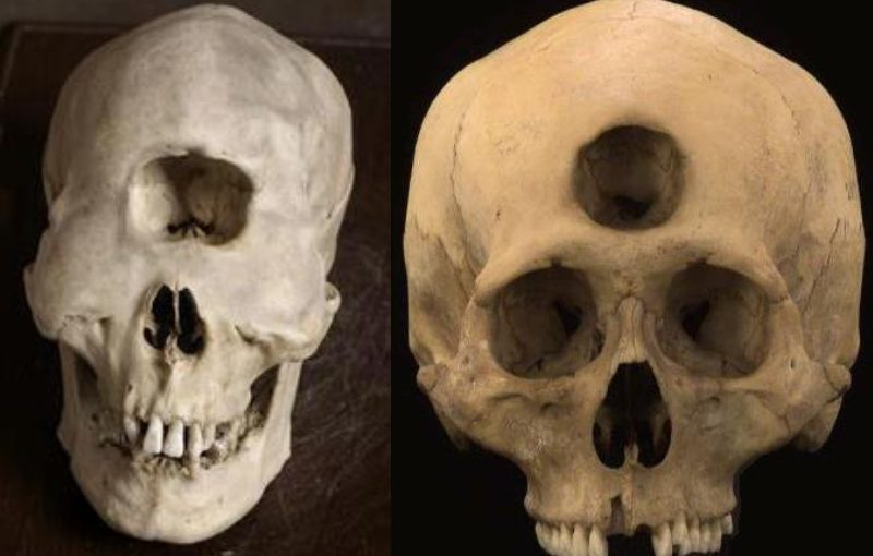 Mysterious skulls have been discovered around the world. Videos.