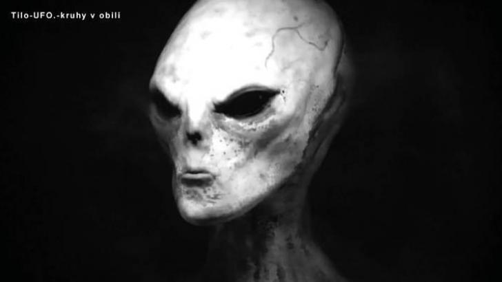 VIDEO: Russian secret BOOK. Alien races part 2