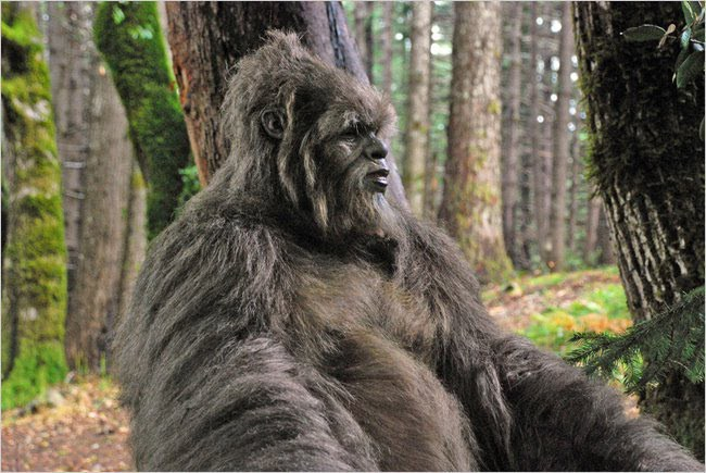 Howdy from Duke – Bigfoot and Bipedal mystery hominids here with you!