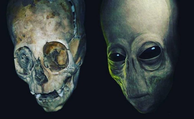 Videos: Alien Skull and Alien Skeleton discovered!!! The DNA proof this Extraterrestrial Skull is real.