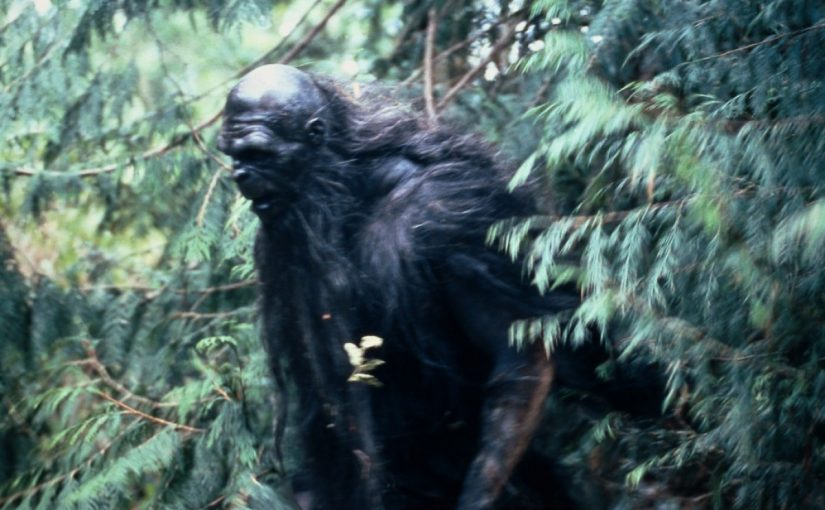 Bigfoot in the Upper Midwest