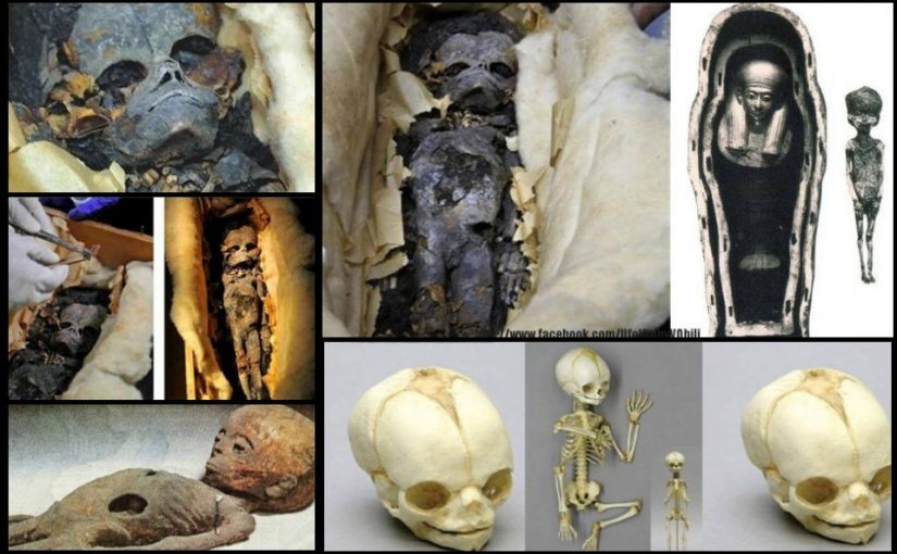 VIDEO: Mummy extraterrestrial found in the Egyptian tomb.