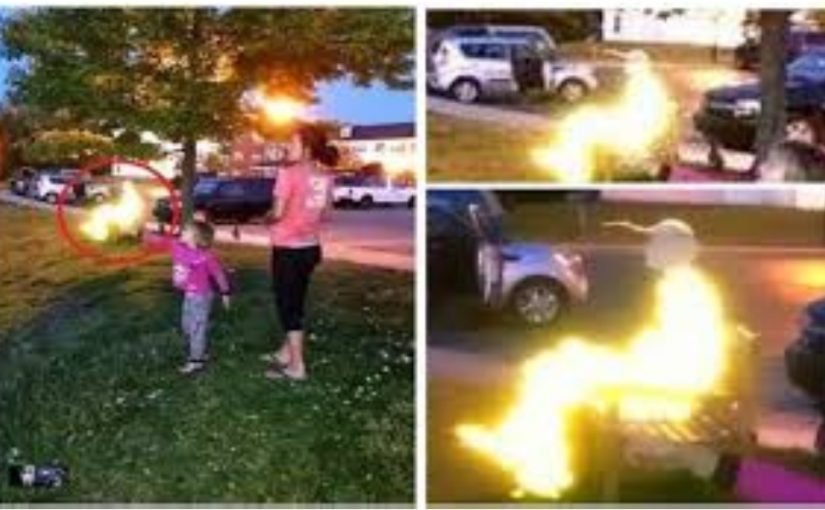 VIDEO: Unexplainable glowing figure appeared on a photo ,made in a totally empty park.Spirit?Alien?Angel?