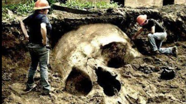 Skeletons of Giants Were Discovered Around the World (Video)